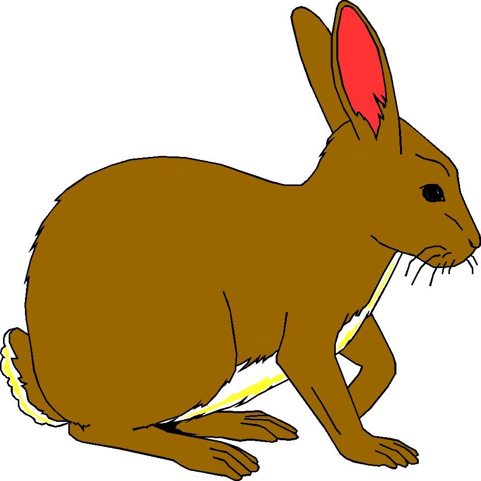 - Rabbit Clip Art