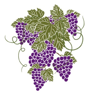 1000  images about Grape Art on Pinterest | Vineyard, Clip art and Green grapes