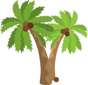 1000  images about Palm ( trees) on Pinterest | Shortfilm, Palm tree clip art and Clip art