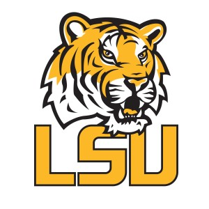 2014 LSU football preview: .