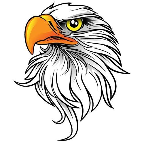 44 Images Of Eagle Mascot Clipart You Can Use These Free Cliparts | Airbrushing | Pinterest | Clip art, Galleries and Clipart gallery