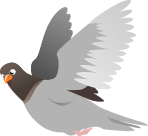 A Flying Pigeon Clip Art
