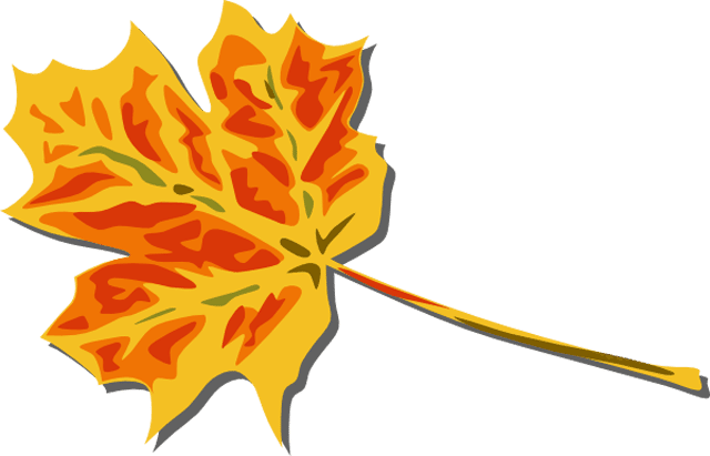 A yellow and red fall leaf.