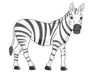 african zebra clipart. Size: 48 Kb