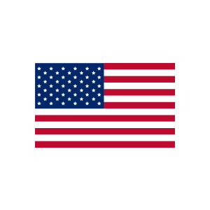 American Flag clipart united states flag #4