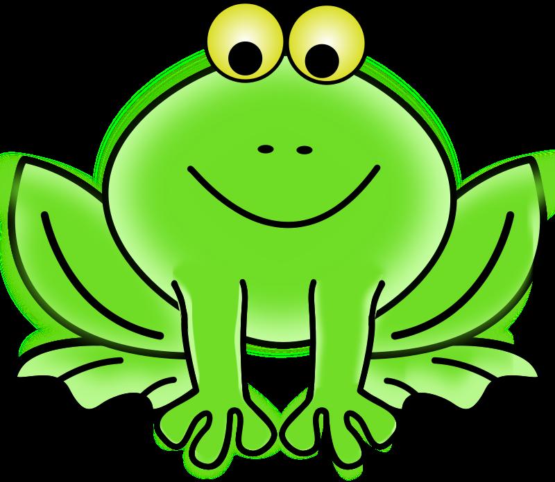 Amphibian Clipart-hdclipartall.com-Clip Art800