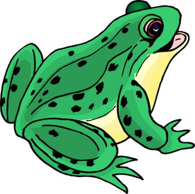 Bullfrog Clipart #12