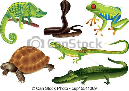Reptiles And Amphibians Set V - Amphibian Clipart