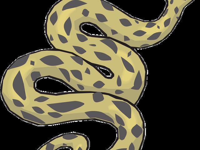 Anaconda Clipart desert snake