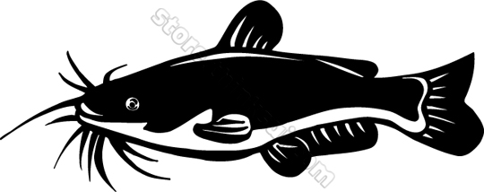 Animal Catfish Clipart