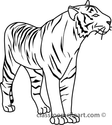 Animals Tiger 32804 Outline Classroom Clipart