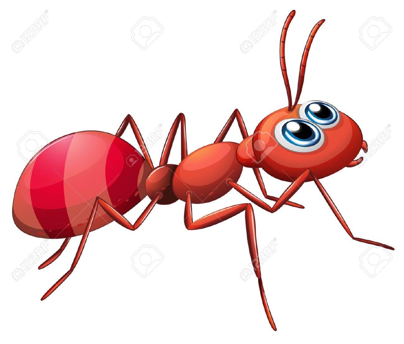 Ant Clipart-hdclipartall.com-Clip Art1300