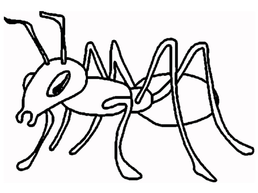 Ant Clipart Black And White - Ant Clipart Black And White