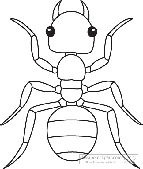 ant-insects-black-white-outline-919.jpg