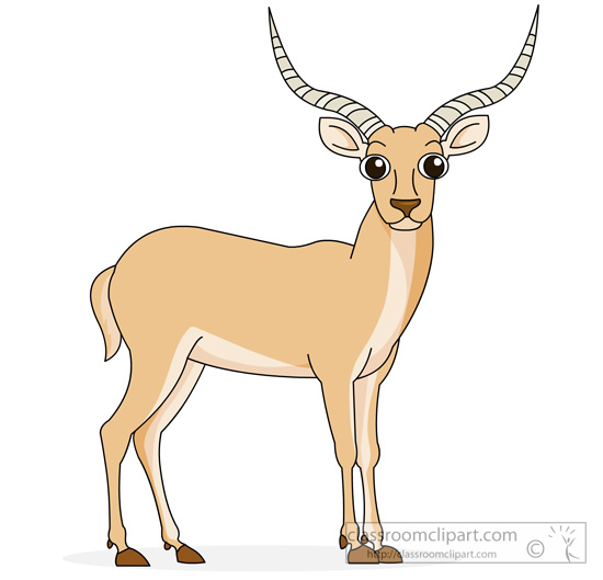 Antelope Clipart : antelope