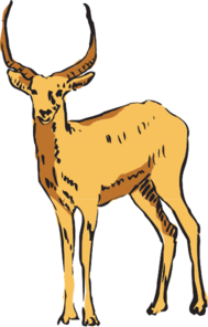 ... Antelope Clipart - clipartall ...