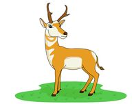 antelope standing on green grass clipart. Size: 41 Kb