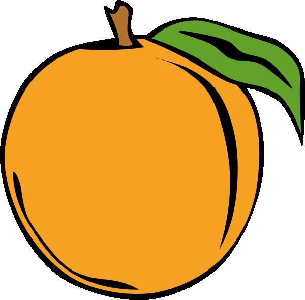 Apricot Clipart