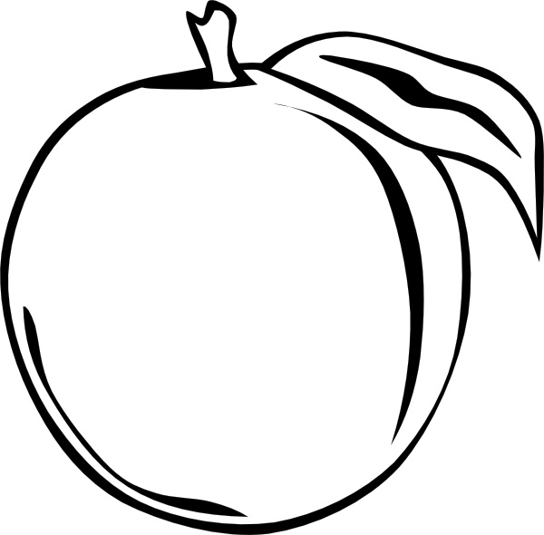 Apricot clipart black and white #1
