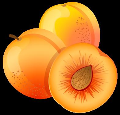 apricot clipart - Buscar con  - Apricot Clipart