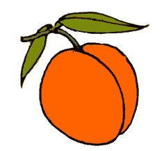 apricot hues. - Apricot Clipart