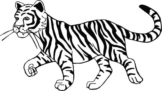 ... Art Black And White u0026middot; Tiger Cub Vector Art | Thinkstock