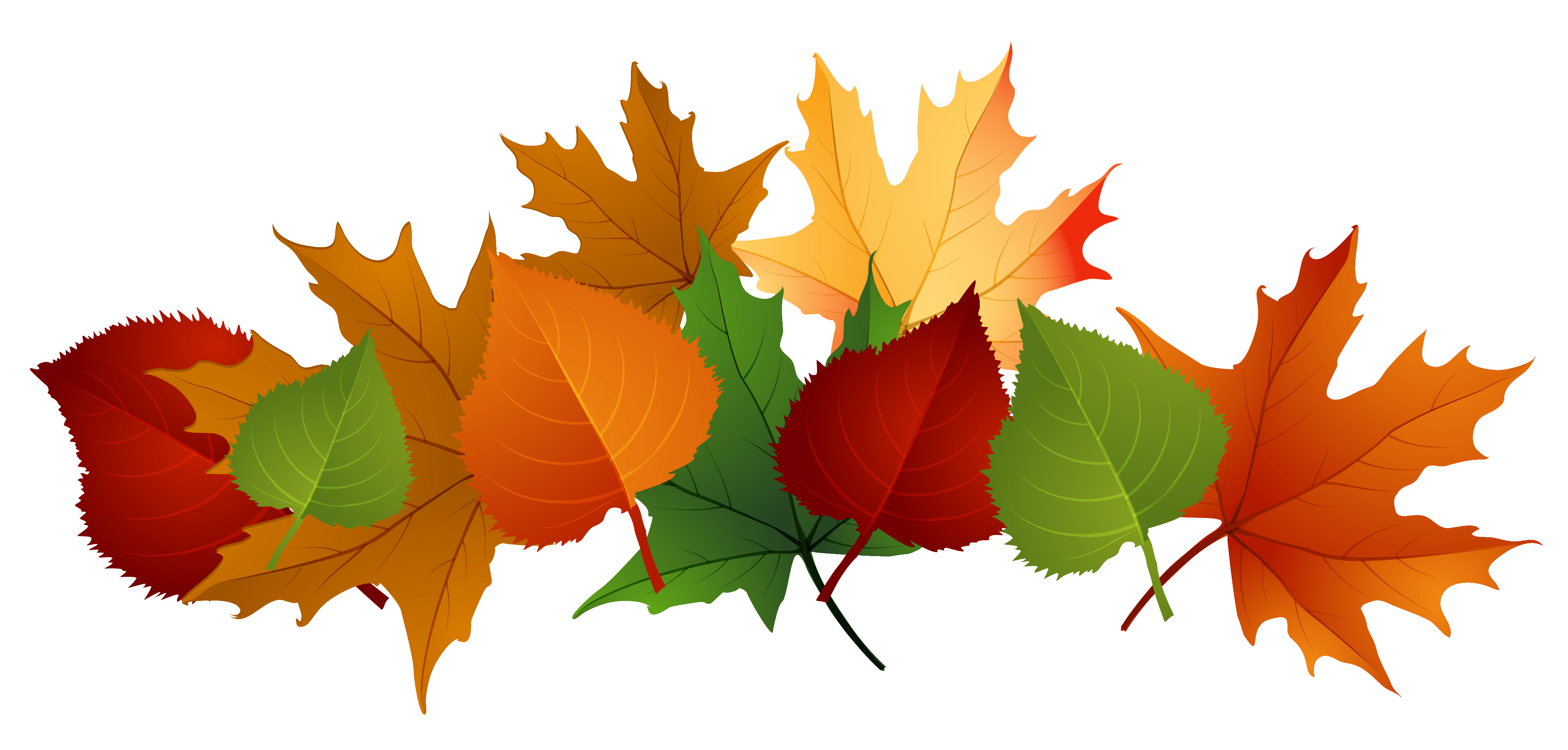 Collection of Fall Leaves on HDWallpapers.