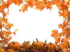 Autumn leaves, Autumn and .