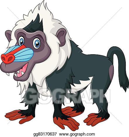 Cute baboon isolated