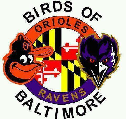 Ravens Baltimore SuperBowl, Baltimore Ravens, Baltimore
