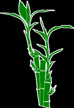 bamboo clipart