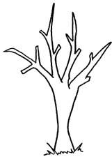 Bare Tree Free Clipart