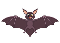 Bat With Wings Open Size: 48 Kb