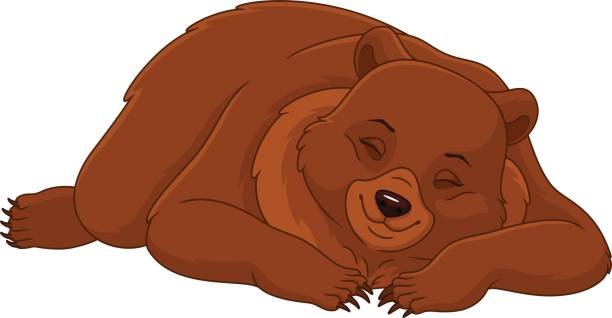 Sleeping Bear vector art illustration
