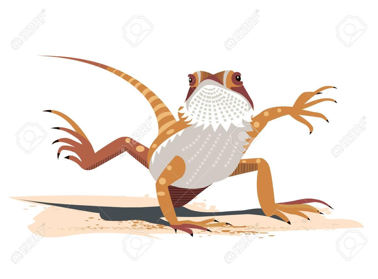 Kung Fu of the Bearded Dragon (Pogona vitticeps) Stock Vector - 84282525