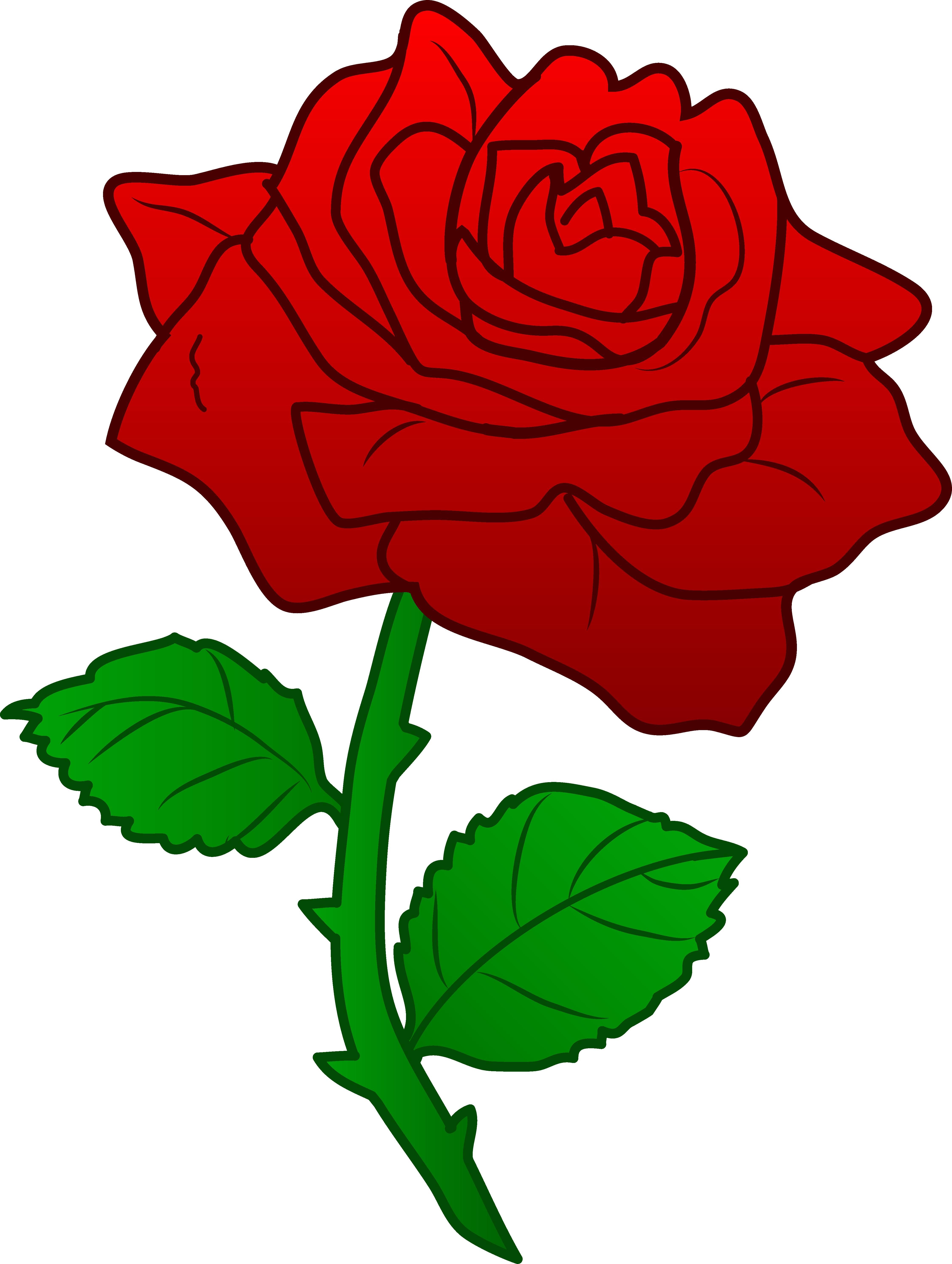 Beautiful Red Rose - Free Clip Art