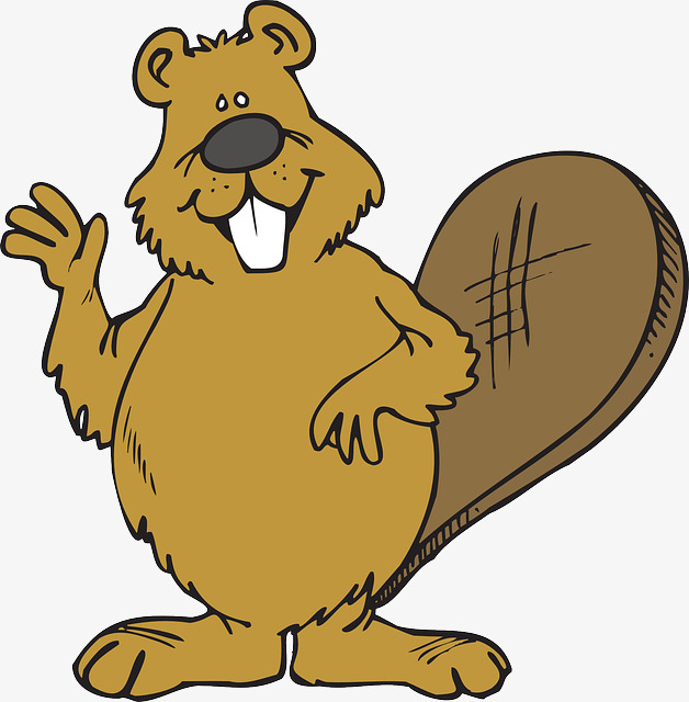 hello beaver, Beaver Clipart, Lovely Beaver PNG Image and Clipart