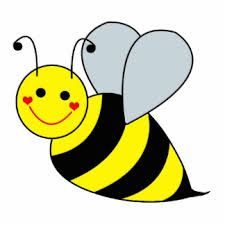 Image result for bee pictures