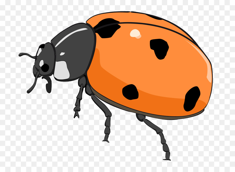 Beetle Ladybird Free content Clip art - Free Tiger Clipart