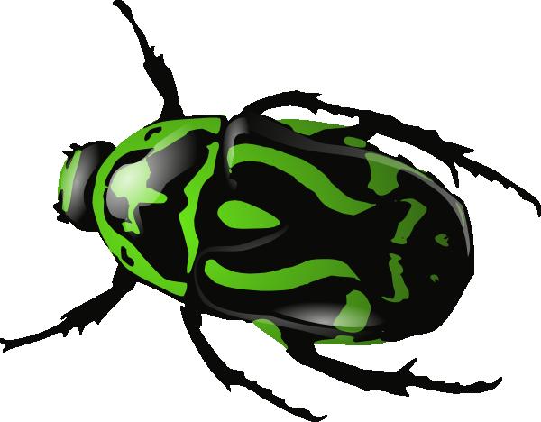 Black Beetle Clipart