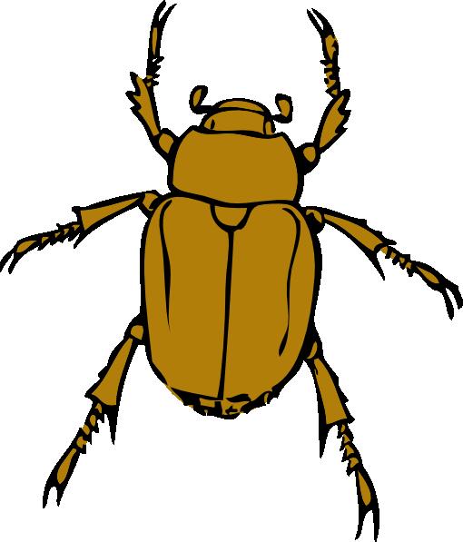 Beetle Bug clip art Free Vector