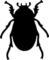 insect-beetle-outline-animated-clipart-crcasm2 insect beetle outline  animated clipart. Size: 44 Kb From: Animals