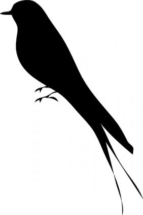 Bird Silhouette, .