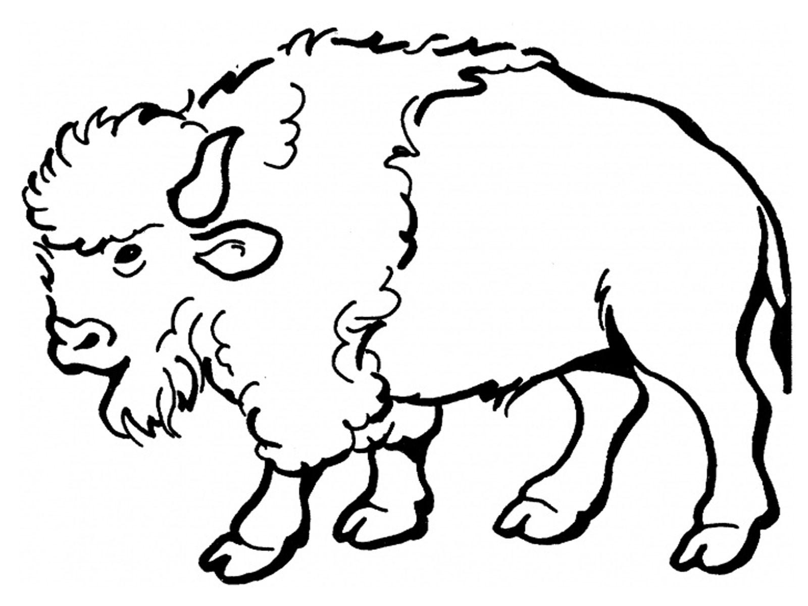 Bison Clip Art