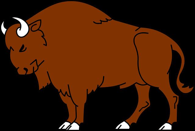 Bison Clipart