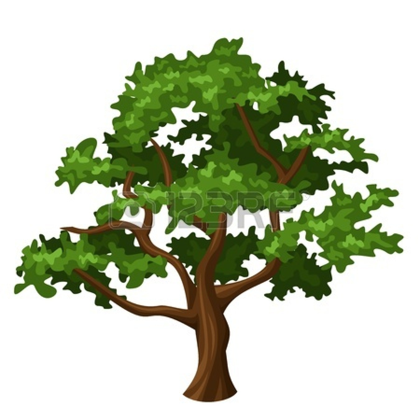 black and white oak tree clipart