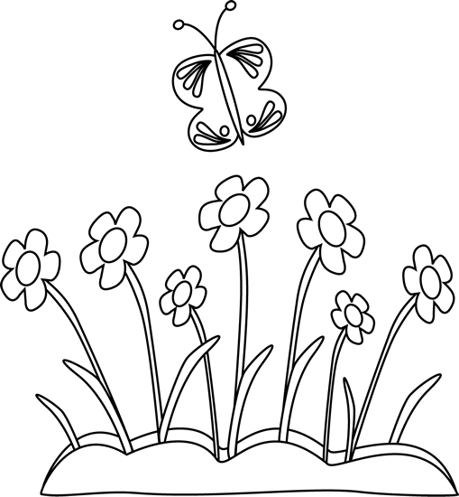 Black and White Butterfly and Flowers