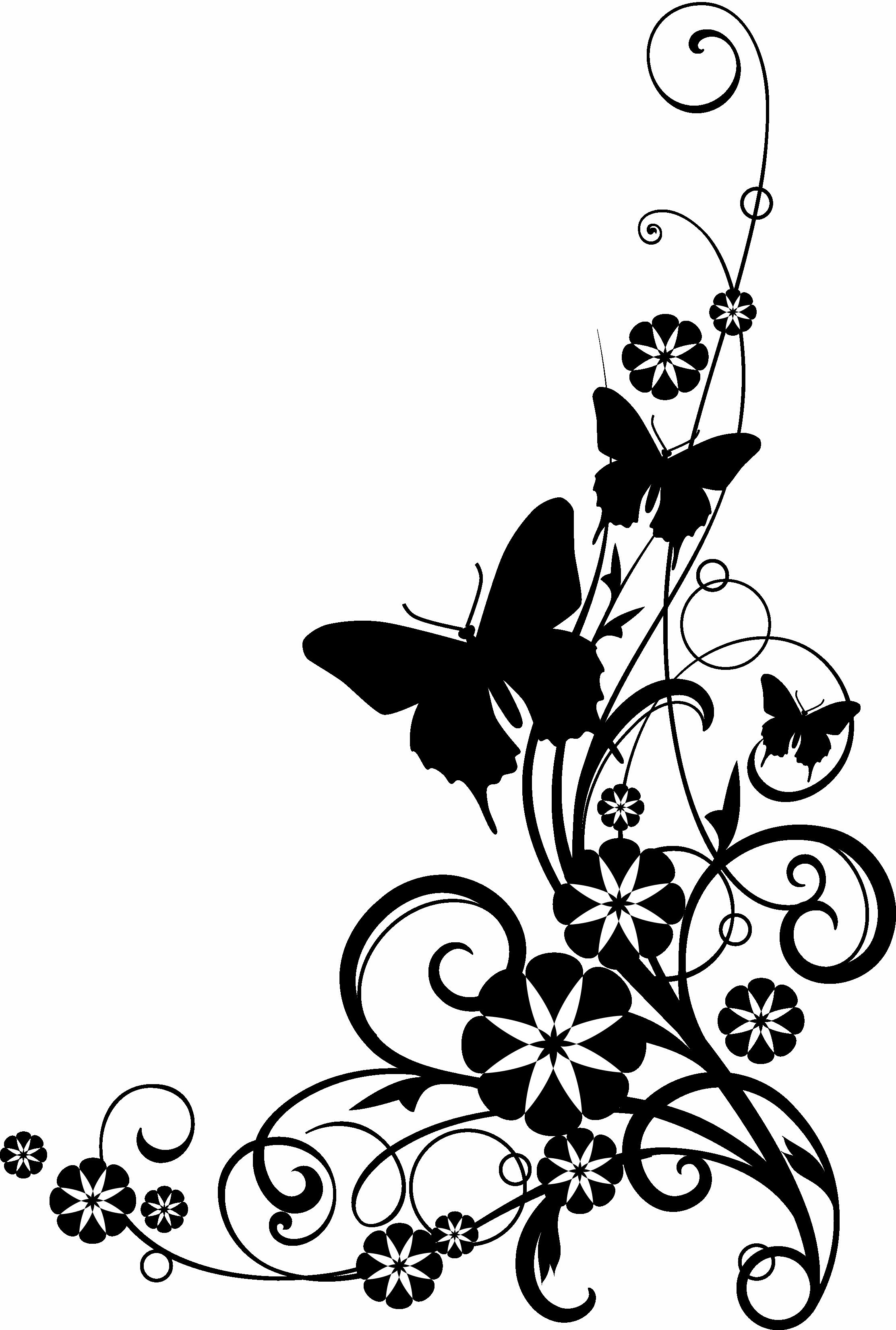 Black And White Flower Border Clipart Atek9ba6c Png