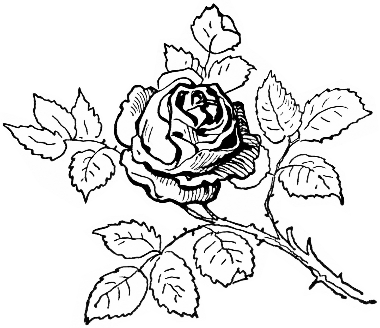 Black And White Flowers Clipart Black And White Flowers Clipart