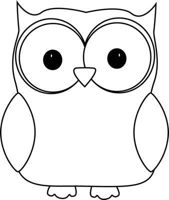 Black and White Owl